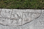 Concho legend in the cement