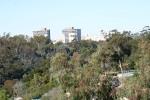 Zoo2004 114