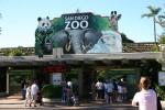 Zoo2004 143